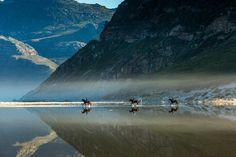 """""""Noordhoek reflections"""" - Noordhoek Beach, Cape Town, South Africa ©Neil Preyer"""