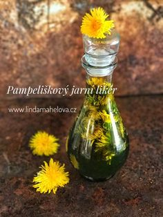 Dandelion Recipes, My Secret Garden, Life Is Good, Herbalism, Detox, Food And Drink, Health Fitness, Herbs, Bottle