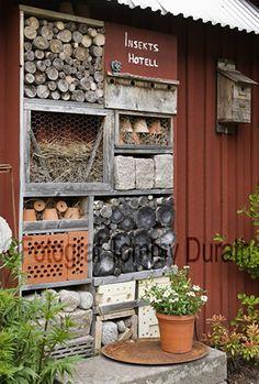 8 Tips To Get Your Kids Enjoy Home Gardening Garden Insects, Garden Animals, Garden Plants, Vege Garden Ideas, Vegetable Garden Design, Outdoor Landscaping, Outdoor Gardens, Growing Gardens, Garden Planning