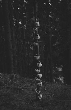Photo manipulation | Creative black and white photography | Hands round tree | Tree hugging