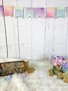 Easter Minis Mini Sessions Photo Studio Spring Backdrop Watercolour Bunting Egg