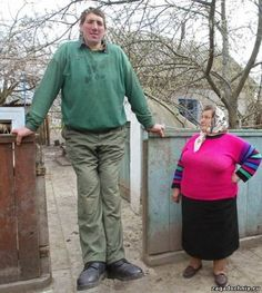 Ukrainian Leonid Stadnik stands approximately 8 feet 5 inches tall. But Guinness refuses to recognize him because he won& submit to an official measurement. Giant People, Big People, Tall People, Little People, Good People, Nephilim Giants, Bizarre News, Long Tall Sally, Body Photography