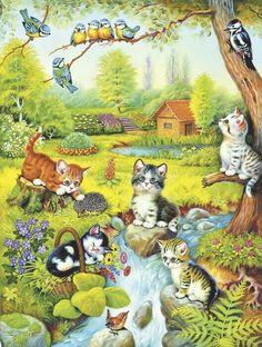 Gatinhos no campo