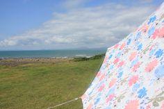Shell Island Wales