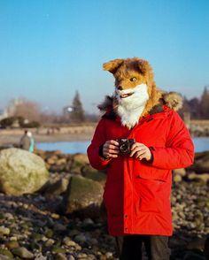 """80 Likes, 11 Comments - Mark Klotz (@markklotz) on Instagram: """"Fox, and his Holga camera! Photo by @joannewhiteart #holga #holga120 #holga120s #fox #joannewhite…"""""""