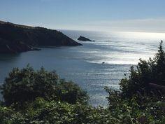 Mew Stone Devon Coast, Stone, Water, Outdoor, Inspiration, Water Water, Biblical Inspiration, Aqua, Outdoors