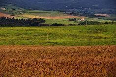 I colori della Toscana by IOMarina.