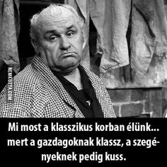 Ez a helyzet. Funny Quotes, Life Quotes, Funny Thoughts, Funny Moments, Einstein, Real Life, Haha, Poems, Hilarious