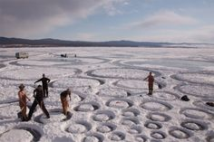 In March of 2010, Jim Denevan and his crew created a large scale artwork on the frozen surface of Lake Baikal, Siberia. The spiral of circles, along a fibonacci curve, grow from an origin of 18″ to several miles in diameter.