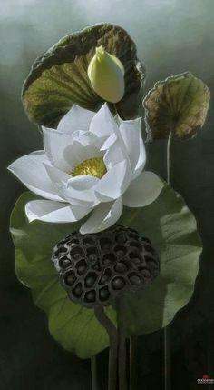 Photo: Oasis Flowers World