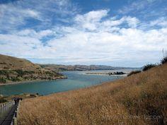 NEW ZEALAND (South Island)