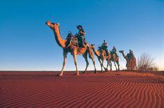 7. Ride a camel.