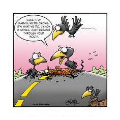 Stale Crackers Animal Funnies, Funny Animals, Farm Cartoon, Todays Comics, Non Sequitur, Comic Panels, Calvin And Hobbes, Comics Online, Funny Sayings