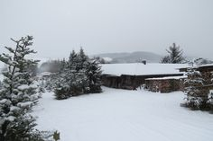 Winter in #Hedemuenden
