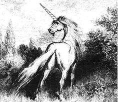 Unicorn  | Kawaii Amino Amino