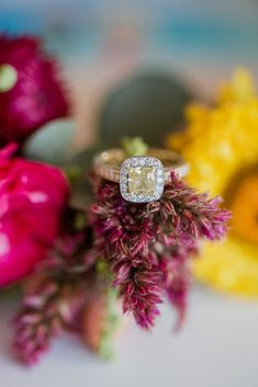 Yellow Diamond Halo Engagement Ring // Photography ~ Bless Photography