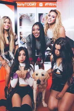 Fifth Harmony || 5h af