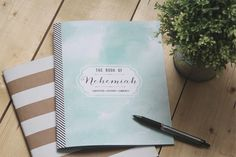 Nehemiah study (organized by She Reads Truth, designed by jones design company)