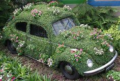 montreal botannical garden   funky beatle in Montreal Botanical Gardens   Flickr - Photo Sharing!