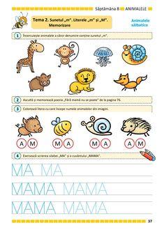 Preschool, Parenting, Activities, Teaching, Education, Kids Education, Rome, Kids, Preschools