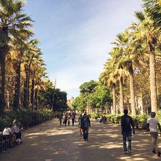 Rambla del Raval #Barcelona