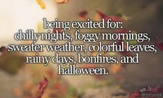 Fall is the best season :) Happy October, Happy Fall Y'all, October Born, November Rain, Hello September, Sweater Weather, Beau Message, Dont Forget To Smile, Don't Forget