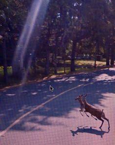Michael Wolf, Google Street View