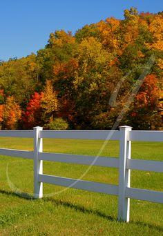 Classic Autumn by Brook Ganguzza: Transcendent Photography