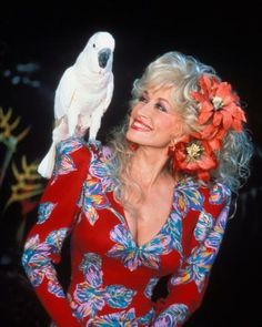 "American singer and songwriter Dolly Parton poses with a parrot on her shoulder during the ""Dolly"" show circa Get premium, high resolution news photos at Getty Images Dolly Parton Tattoos, Dolly Parton Wigs, Dolly Parton Costume, Dolly Parton Quotes, Country Musicians, Country Music Singers, Country Artists, Dolly Parton Pictures, Country Music Stars"