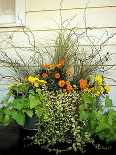 Fountaingrass, Sweet Potato Vine, Willow branches, Marigolds, and Creeping Myrtle.