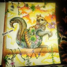 My final coloring for #squirrelmyday  . Thankyou @passionistacolorista for this color along  I got new experience from this: squirrel colors (cute animal that i've never seen before in my life)  #coloralong #enchantedforestcoloringbook #johanna_basford #johannabasford #enchantedforest #adultcoloringbook #coloring #coloringbook #beautifulcoloring #coloringmasterpiece #coloringforadults #조한나바스포드 #컬러링북 #컬러링 #컬러링북스타그램 #색깔 #색깔책 #취미