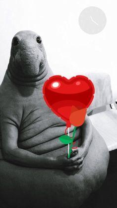 Дорогие мои, я Вас очень люблю. С днём Всех В-X LoVe! #деньсвятоговалентина #деньвлюбленных #valentino #valentina #valentineday #valentines #мтс #florida #orlando #tampa #happy #happyday