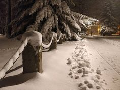 #tampere #aleksanterinkirkko #aleksanterinkirkkopuisto