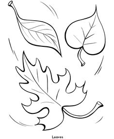 Easy Shapes Coloring pages | Fall Leaves