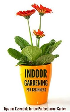 22 April 2015 : Indoor Gardening for Beginners: Tips and Essentials for the Perfect Indoor Garden by Jessica Kahler http://www.dailyfreebooks.com/bookinfo.php?book=aHR0cDovL3d3dy5hbWF6b24uY29tL2dwL3Byb2R1Y3QvQjAwV0U4UUY0Ni8/dGFnPWRhaWx5ZmItMjA=