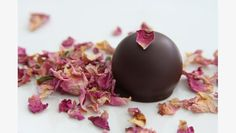 French Broad Chocolates | 2013 Audience Choice Awards Nominee | Martha Stewart American Made