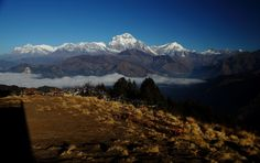 Ghorepani Poon Hill trek is a short, easy and amazing eco-trekking trail in the western Nepal, popular for having awesome mountain vistas of dozens of Himalayas, amazing sunrise and sunset views. Trekking, Mount Everest, Sunrise, Trail, Places To Visit, Mountains, Awesome, Sunrises, Be Awesome