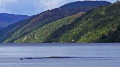 """A freak wave breaks the still waters of Loch Ness - but could it have been the monster? Amateur photographer David Elder claims a """"solid black object"""" gliding beneath the lake's surface caused the sudden ripple. Loch Ness Monster Video, Loch Ness Monster Sightings, Monstre Du Loch Ness, Lago Ness, Fort Augustus, Rogue Wave, Lake Monsters, Bizarre Pictures, Creepy Photos"""