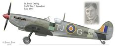 Peter During South African Air Force No 7 Squadron Italy Air Force Aircraft, Ww2 Aircraft, Fighter Aircraft, Military Aircraft, Fighter Jets, South African Air Force, The Spitfires, Supermarine Spitfire, Battle Of Britain
