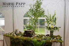 Enchanted Forest, Lord of the Rings wedding decor