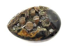 Simbircite geode with Belemnite, ID mm Ammonite, International Trade, Crystals, Ebay, Crystal, Crystals Minerals