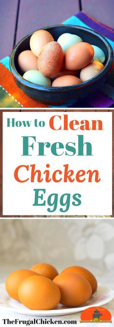 You don't always need to clean fresh chicken eggs, but when you do, you want to do it right. Here's pro tips to clean them so they're healthy  for you to eat!