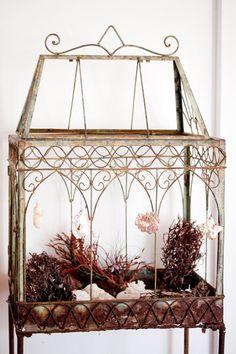 Stunning terrarium turned nature alter... (via re-nest)