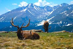 Rocky Mountain National Park, Estes Park, Colorado. One of the most beautiful places on earth.