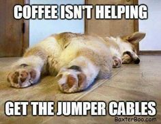 NO, JUST MORE STRONGER COFFEE!