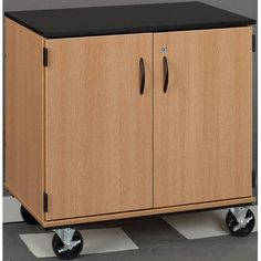 Stevens ID Systems Science Storage Cart Color: Fashion Grey, Finish: Cherry