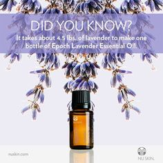 Pioneering the anti-aging skin care industry with scientifically advanced ingredients and technology, Nu Skin anti aging skin care are some of the best. Nu Skin, Lavender Essential Oil Uses, Essential Oils For Skin, Beauty Lounge, Epoch, Anti Aging Skin Care, Beauty Care, Aromatherapy, Did You Know