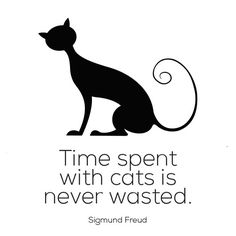 Time Spent with Cats is Never Wasted. I love this quote by Sigmund Freud. See more cat quotes here. Crazy Cat Lady, Crazy Cats, I Love Cats, Cool Cats, Neko, Black Cat Art, Black Cats, Black Kitty, Foster Cat