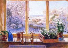 Stephen J. Darbishire  - I always wait for the crocus to tell me spring is on the way again. Kg