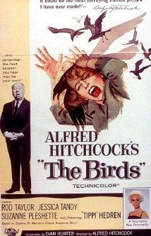 Alfred Hitchcok's The Birds - A wealthy San Francisco socialite pursues a potential boyfriend to a small Northern California town that slowly takes a turn for the bizarre when birds of all kinds suddenly begin to attack people there in increasing numbers and with increasing viciousness.